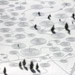 land art hivernal Sonja Hinrichsen