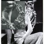 barbara breitenfellner